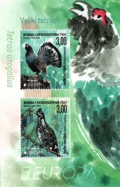Big Grouse, souvenir sheet, MNH, 2021
