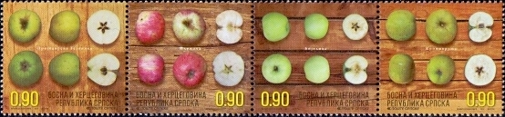 Apples, set of 4 stamps, MINT, 2014