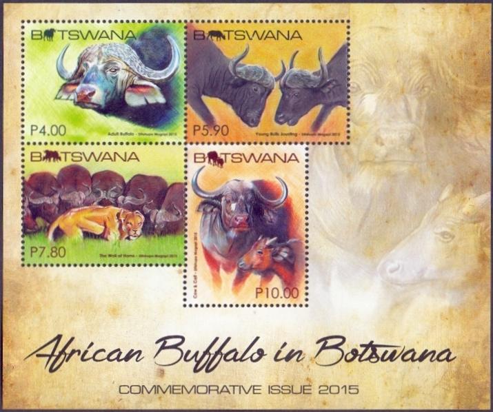 Buffaloes, souvenir sheet, MINT, 2015