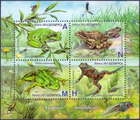 Frogs, souvenir sheet, MINT, 2015