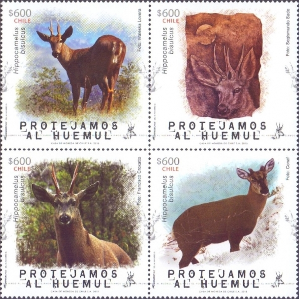 Fauna: Protect the Huemul, set of 4 stamps, MNH, 2015