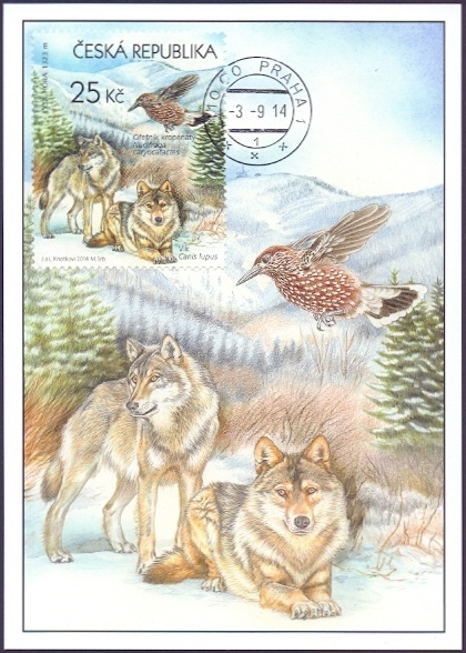 Wolves and Bird - Beskid Mountains, maximum card, 2014