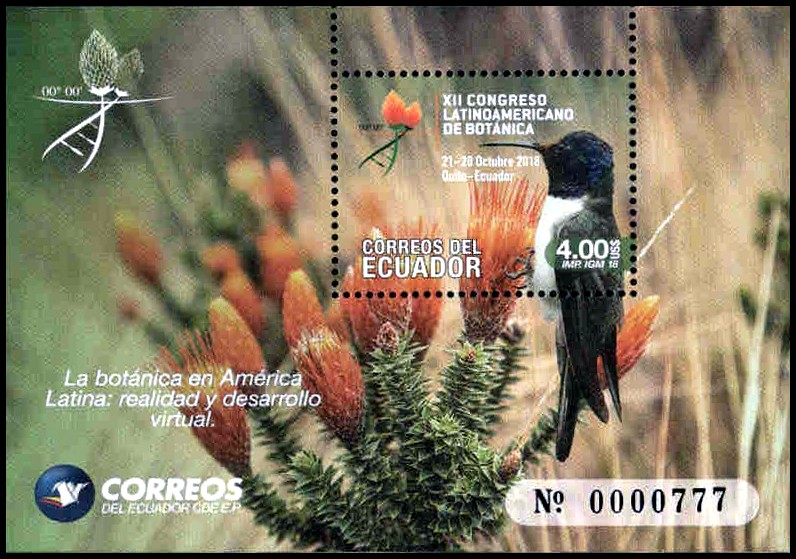 Hummingbird, souvenir sheet, MNH, 2018