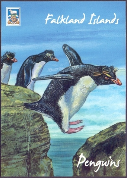 Penguins 5th, postcard without stamp, 2013