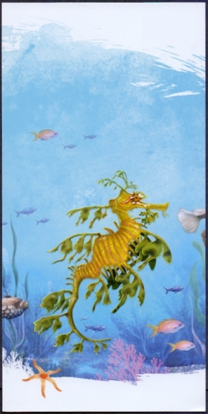 Big Sea Dragon (Phycodurus eques), postcard without stamp, 2012