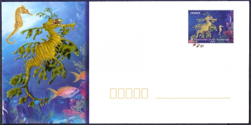 Big Sea Dragon (Phycodurus eques), envelope with printed stamp, MINT, 2012
