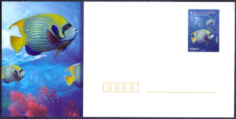 Angelfish (Pomacanthus imperator), envelope with printed stamp, MINT, 2012