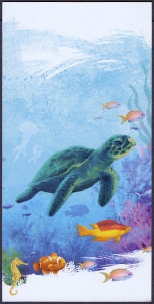Turtle, postcard without stamp, 2012