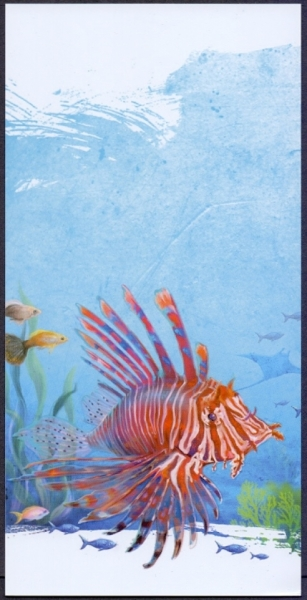 Fish, postcard without stamp, 2012