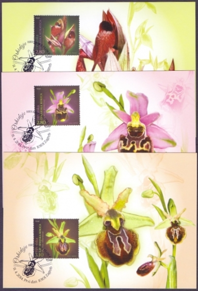 Orchids, set of 3 maximum cards, 2014