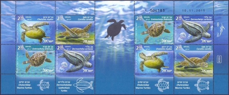 Marine Turtles, souvenir sheet, MNH, 2016