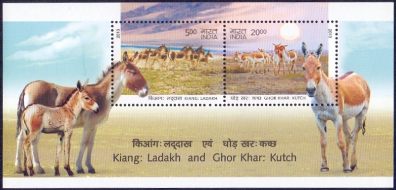 Wild Ass Kutchh and Ladakh, souvenir sheet, MINT, 2013
