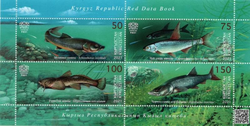 Fishes, souvenir sheet, MNH, 2021