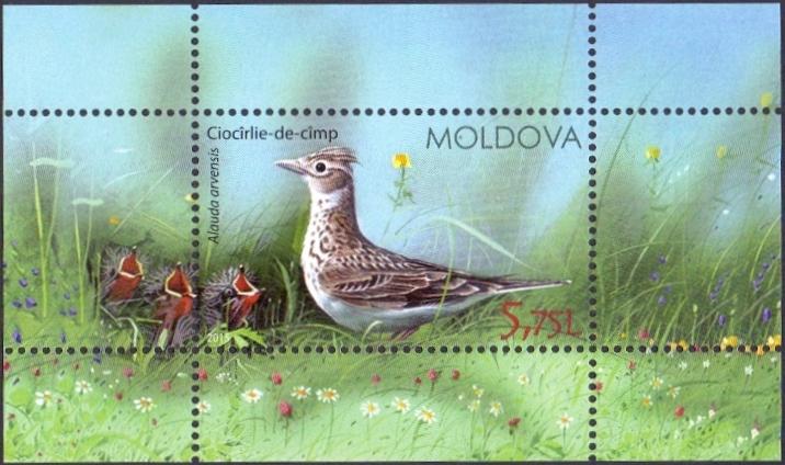 Birds of Moldova, souvenir sheet, MINT, 2015