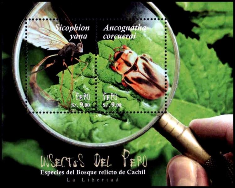 Insects, souvenir sheet, MNH, 2018