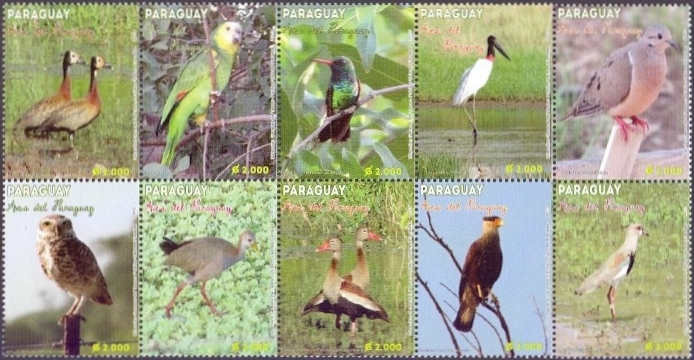 Birds of Paraguay, set of 10 stamps, MNH, 2013