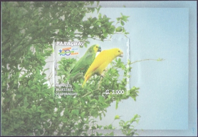 Birds of Paraguay: Parrots, souvenir sheet, MINT, 2015