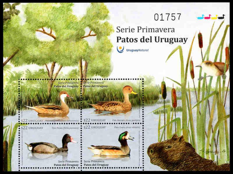 Ducks of Uruguay, souvenir sheet, MINT, 2018