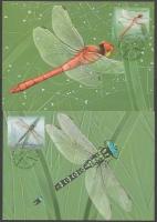 Dragonflies, set of 2 maximum cards, 2012