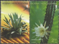 Cactus, set of 2 stamps, MINT, 2004