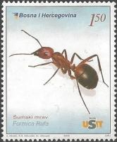 Woods Ant (Formica rufa), MINT, 2006