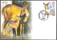 Wild life - Deer (Capreolus capreolus), FDC, 2006