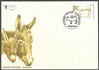 Donkey, FDC, 2007