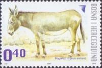 Donkey, stamp, MINT, 2007