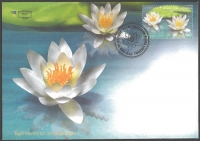 Flora - Water Lily, FDC, 2008