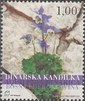 The Flora of BiH: Dinarian Kandilka (Aquilegia dinarica), MINT, 2004