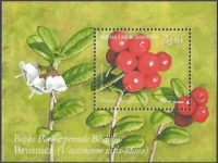 Flora of Blidinje Nature Park - Cranberry, souvenir sheet, MINT, 2007