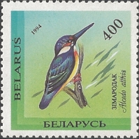 Kingfisher (Alcedo atthis), MINT, 1994