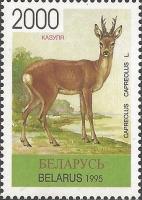 Roe deer (Capreolus capreolus), MINT, 1996