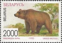 Brown bear (Ursus arctos), MINT, 1996