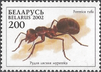 Red wood ant (Formica rufa), MINT, 2002