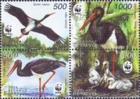 Ciconia nigra (WWF), set of 4 stamps, MINT, 2005