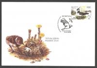 Vanellus vanellus, FDC, 2006
