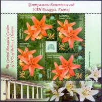 Flower - Lily 'Zorenka', souvenir sheet, MINT, 2014