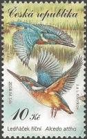 Kingfisher (Alcedo atthis), MINT, 2008