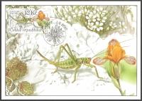 Large grasshopper (Saga pedo) and Variegated iris (Iris variegata), maximum card, 2010