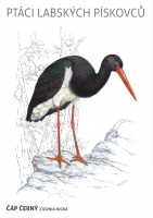 Black stork (Ciconia nigra), postcard without stamp, issue date 2014