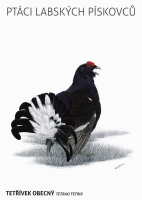 Black grouse (Tetrao tetrix), postcard without stamp, issue date 2014