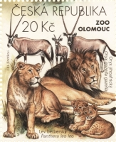 Barbary Lions and South African Oryxes, stamp, MINT, 2016