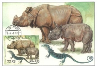 Indian Rhinoceros and Blue Lizard, maximum card, 2017
