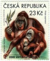 Bornean Orangutans, stamp, MINT, 2018