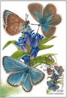 Alcon large blue Rebel, maximum card, 2021