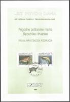 Loggerhead Turtle and Bottlenose Dolphin (Tursiops truncatus), Souvenir Card, 1995