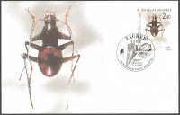 Cave beetle (Radziella styx), maximum card, 1997