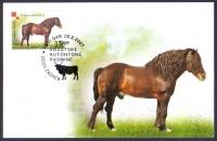Posavina Horse, maximum card, 2007