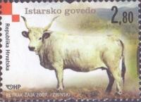Istrian Ox, MINT, 2007
